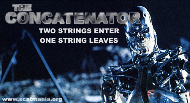 The Concatenator: Two Strings Enter, One String Leaves