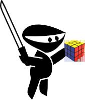 Ninja with a Rubix Cube