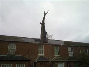 The Headington Shark.