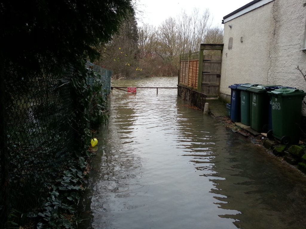 Flooded garden and driveway.