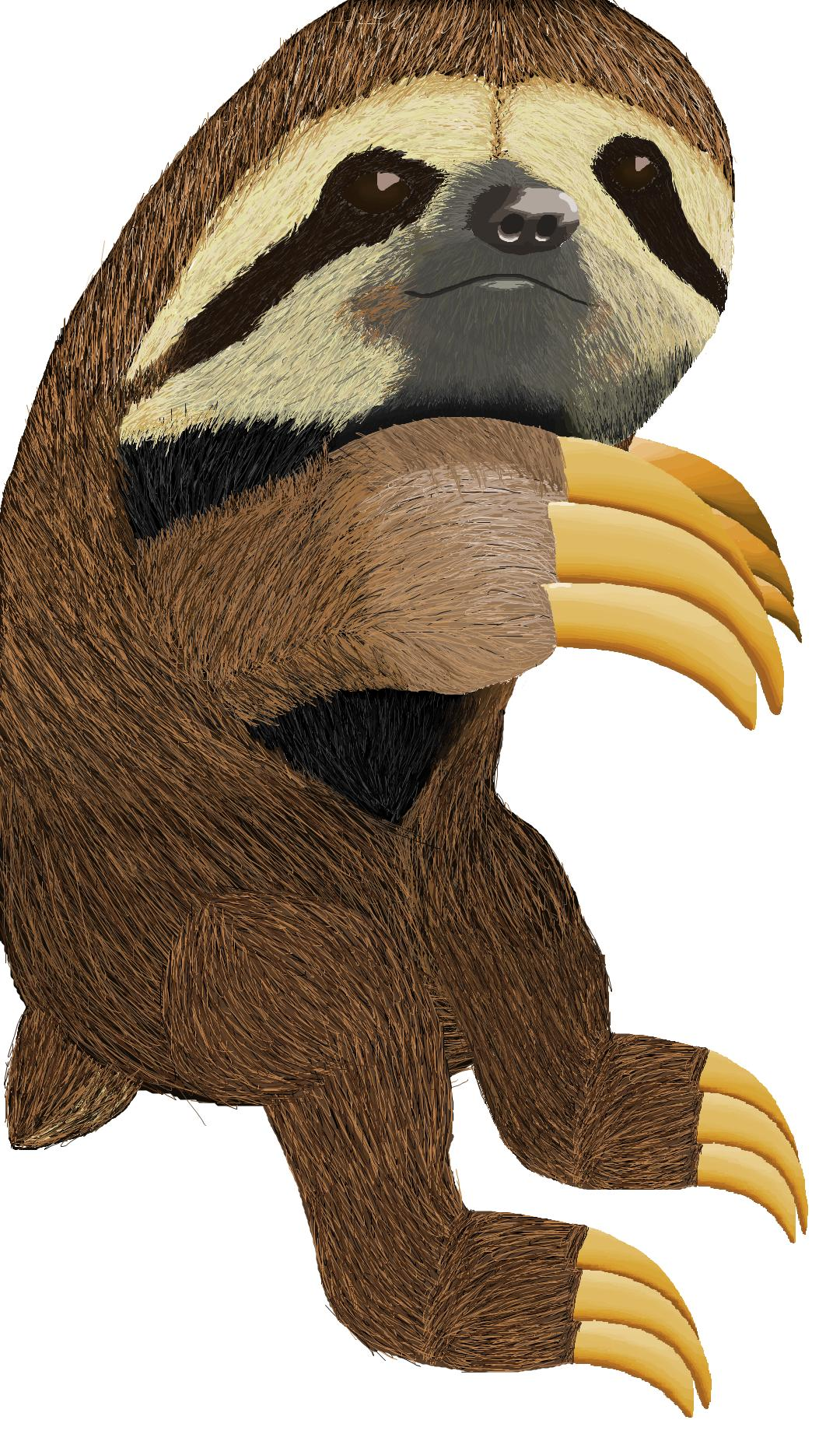 MS Paint sloth