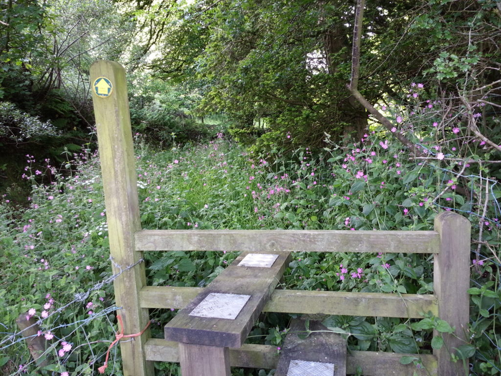 Stile to an overgrown path; Devon.