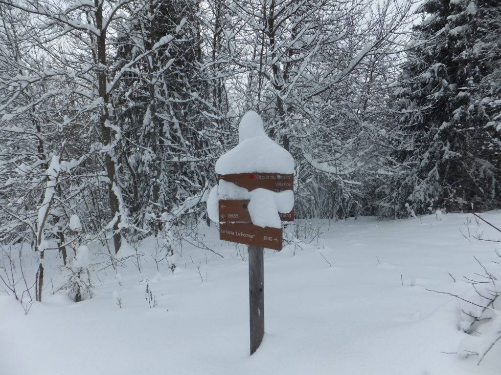 A hiking trail sign outside of La Tania, covered in snow.
