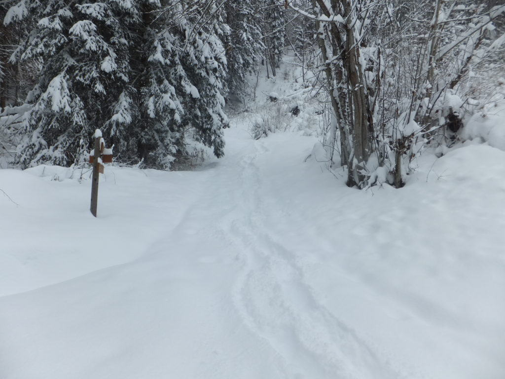 And seriously: who's at the end of their second trimester and thinks that hiking though waist-deep snow down an unmarked trail up the side of an Alp, in winter, is a good idea?