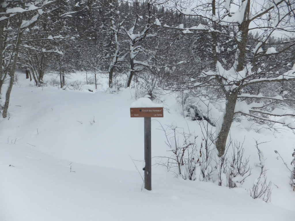 I wonder how many signposts we would have seen had we been on the correct course to begin with? The route looked completely buried, from where we stood.