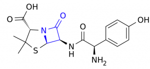 Amoxicillin, with lactam ring highlighted.