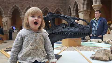 Annabel is awed by the size of a tyrannosaurus rex skeleton.