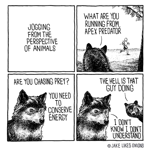 Jogging from the perspective of animals