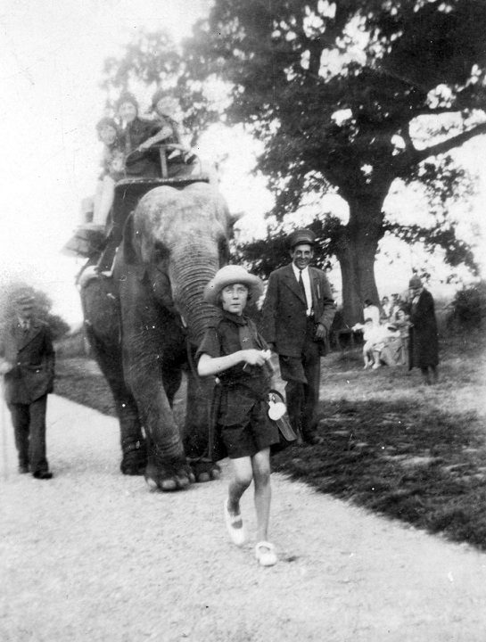 Rosie the elephant provides rides for children