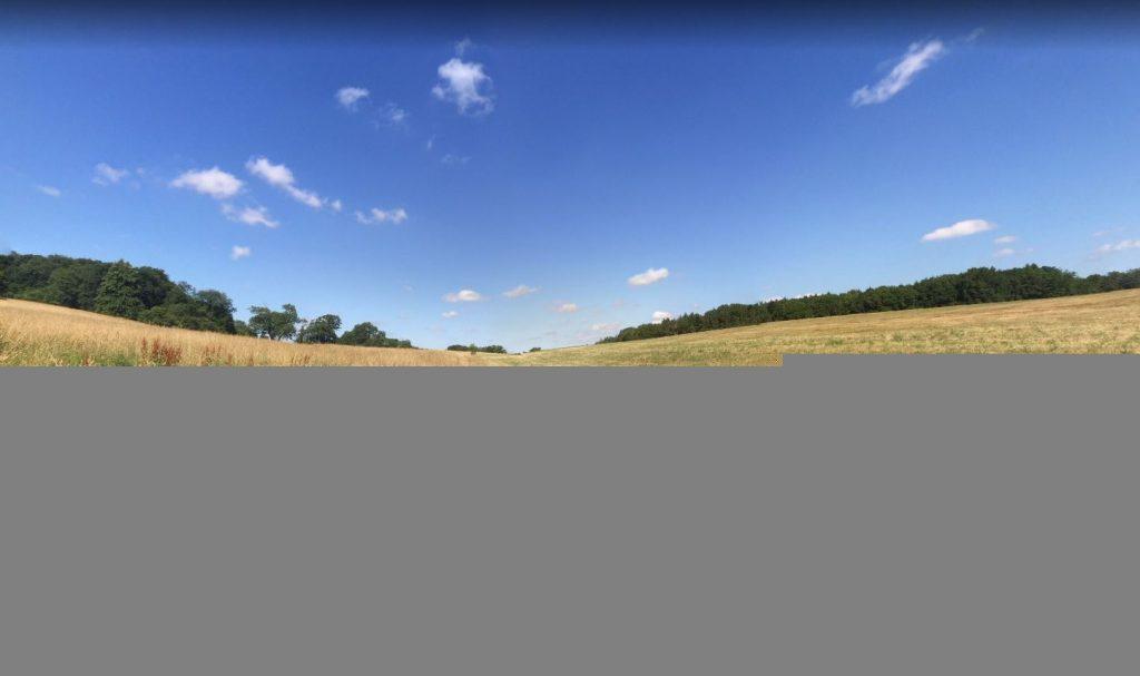 Field near Finstock