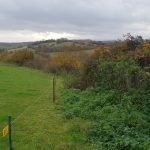 The gap between the electric fence and the bushes is allegedly a footpath
