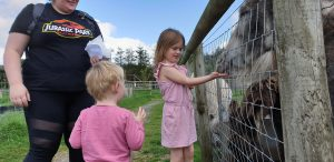Annabel shows John how to feed the animals.