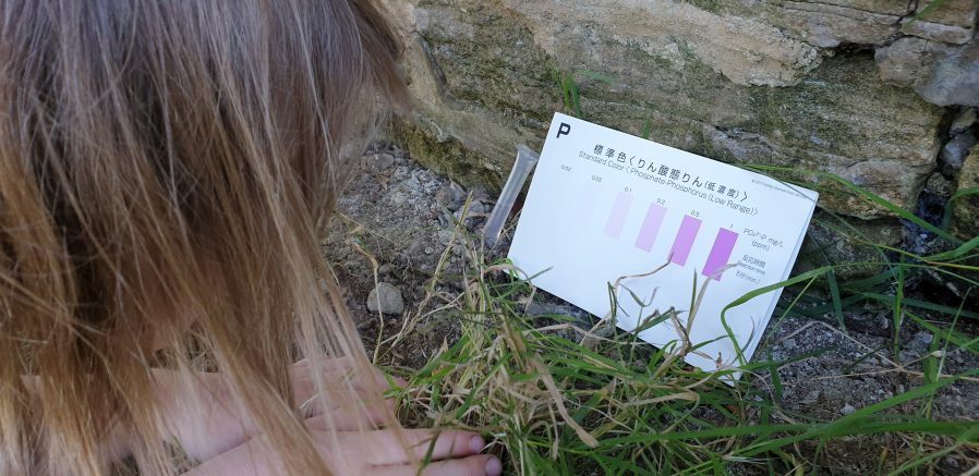 Annabel compares her sample to the colour chart.