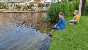 The kids by the pond between the hotels.
