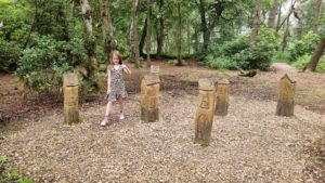 Fairy houses in a wood.