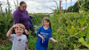 Ruth and the children pick gooseberries.