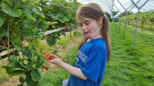 A girl pulls a face as she looks at a strawberry.