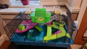 A fully-assembled 'hamster heaven' cage.